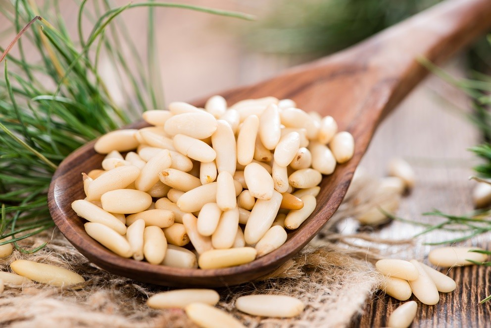 Pine Nuts #2